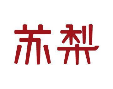 苏梨1(天津河西商场)