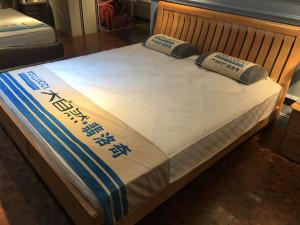 大自然(贵阳) 床垫 适合所有家装风格 棕床垫系列 尚境11