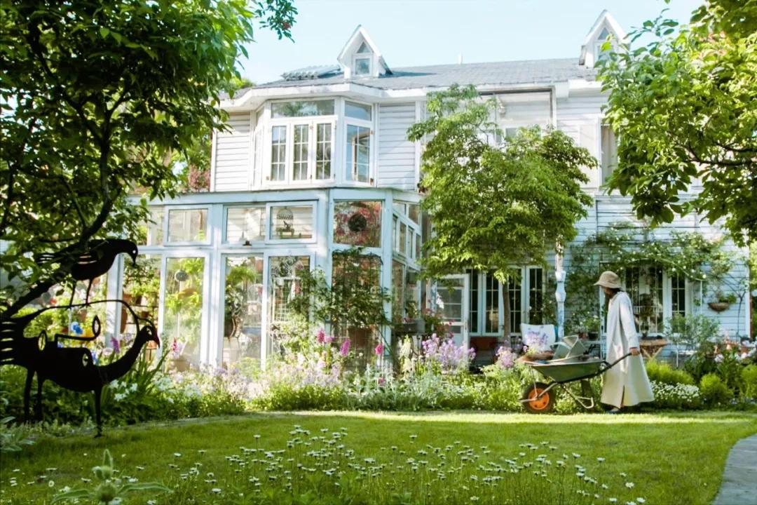 一个安徽女教师,在家造400㎡秘密花园,美如仙境